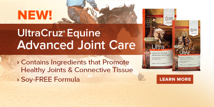 New UltraCruz Equine Advanced Joint Care, click to learn more