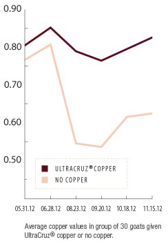 UltraCruz® Goat Copper Bolus Supplement | Santa Cruz Animal Health