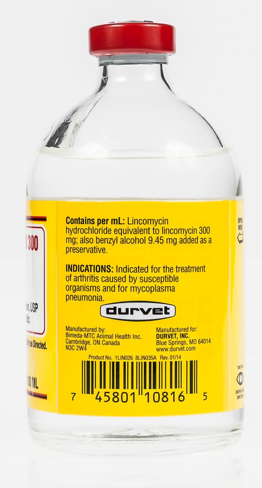 Lincomycin Antibiotics
