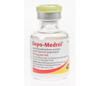depo steroid for dogs