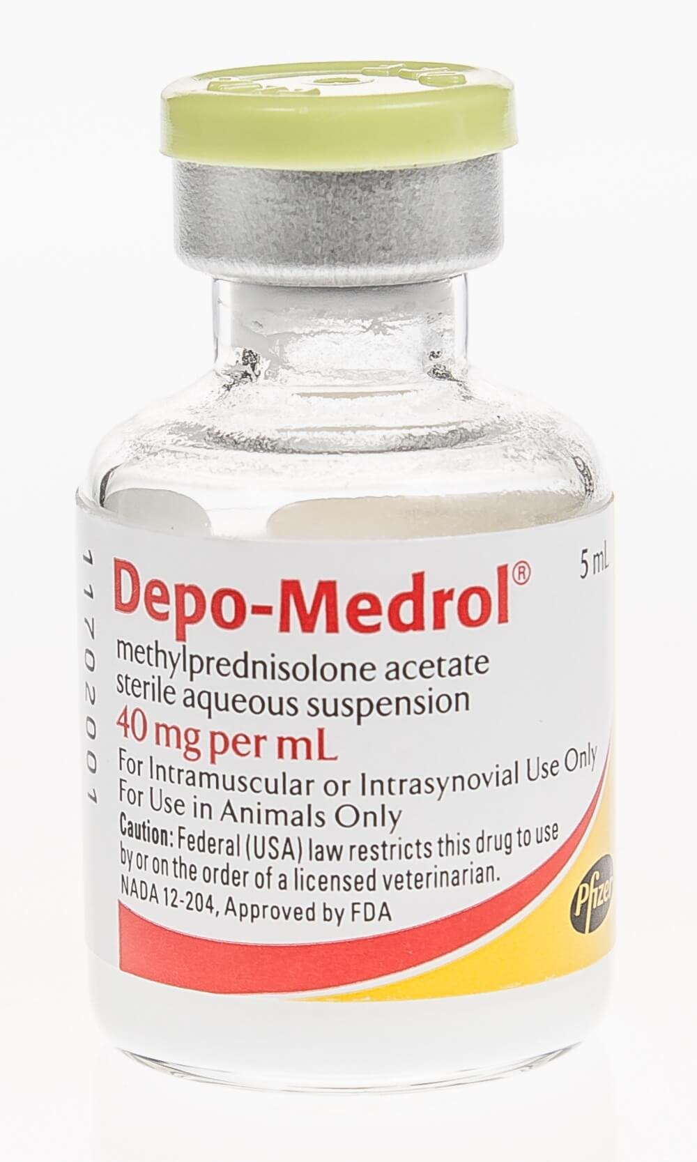 medrol steroid for dogs