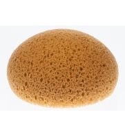 Hydra Honeycomb Form Tack Sponges, 1 each