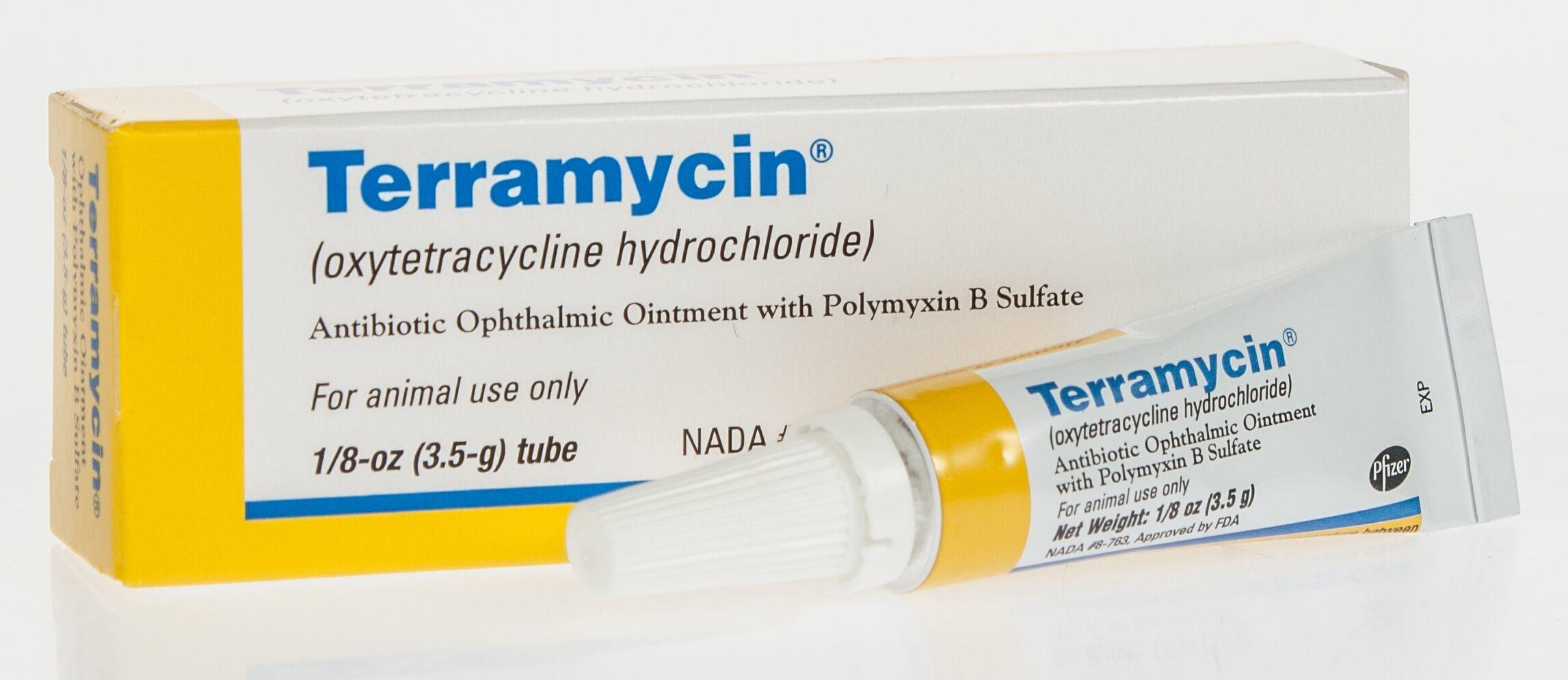 Terramycin Ophthalmic Ointment